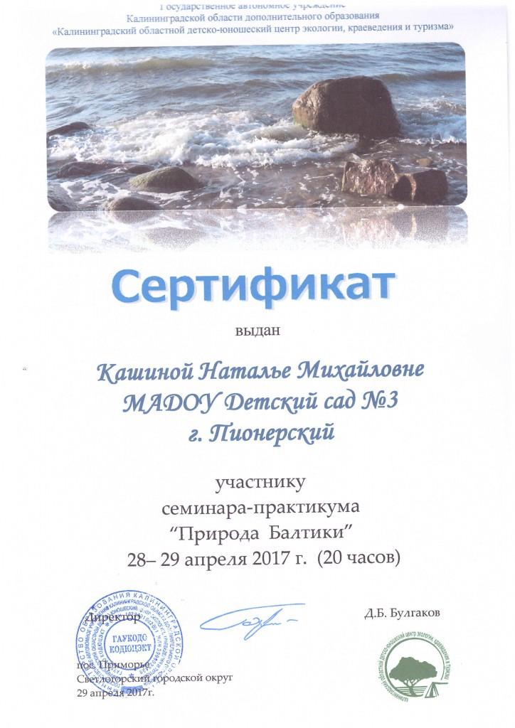 Семинар Кашина